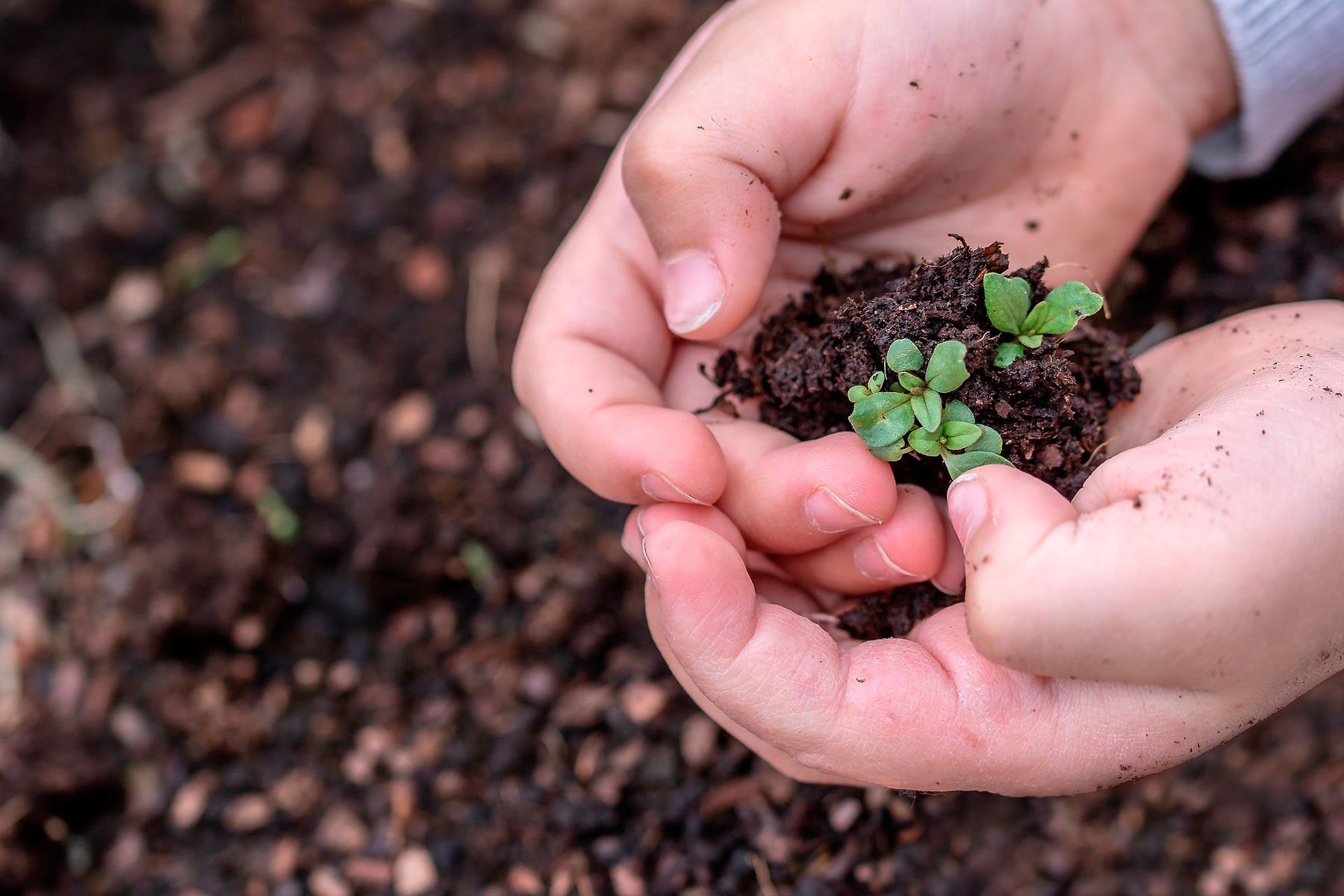 Aspirar a los ODS como sociedad nos promete frutos que mejorarán la calidad de vida de todos y todas.