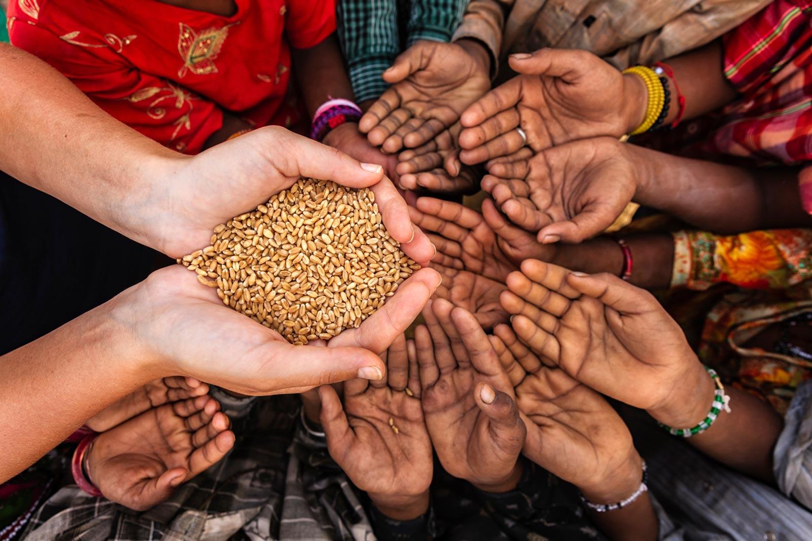 Hablamos en clase sobre el hambre en el mundo