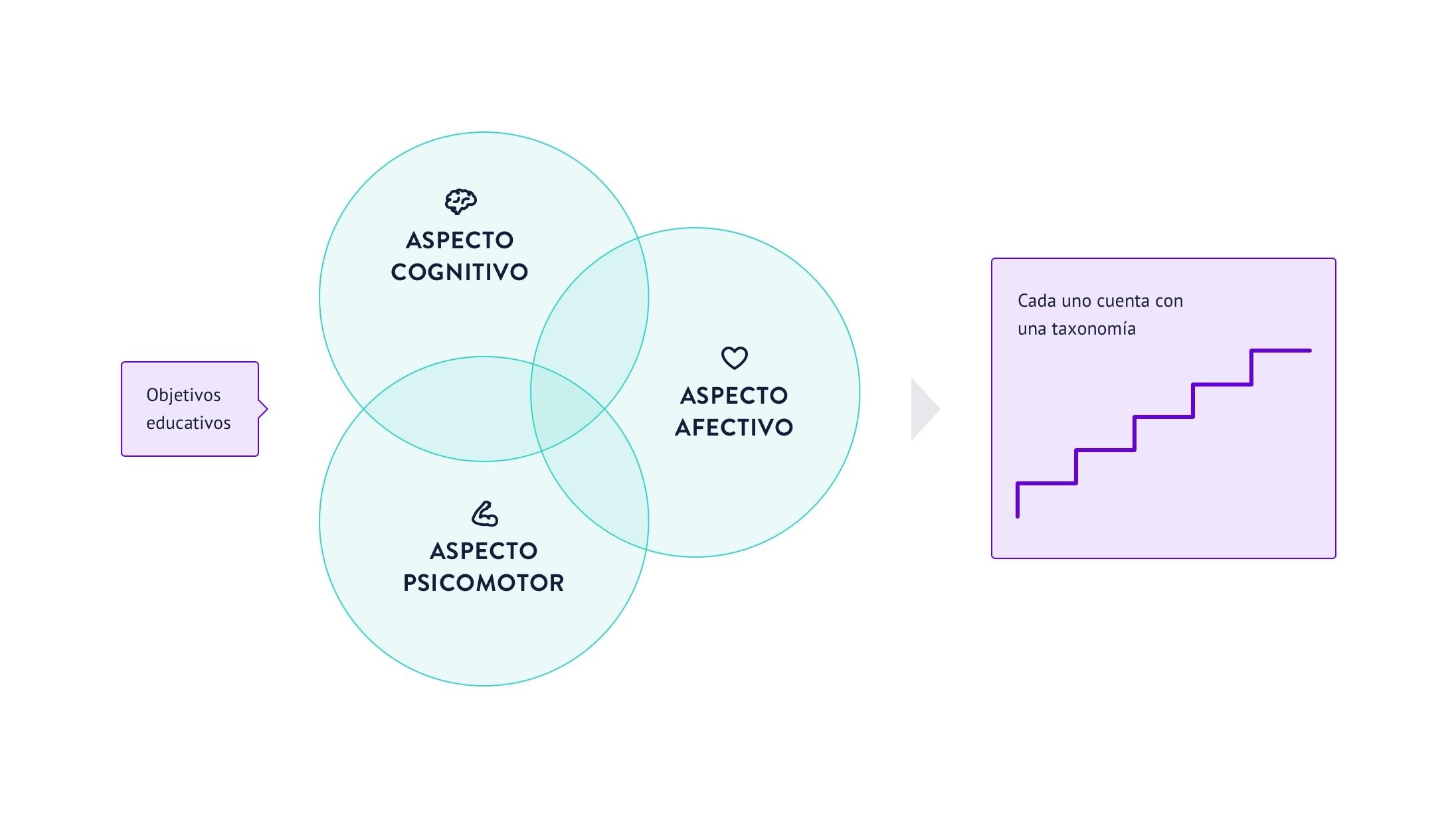 Cada aspecto de los objetivos educativos contiene una taxonomía propia que va de lo más simple a lo más complejo.