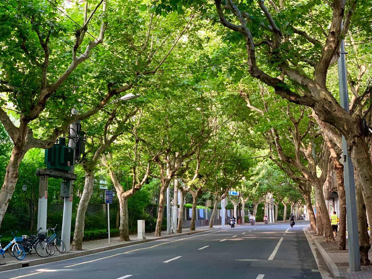 Una ciudad sostenible influye en nuestra calidad de vida y bienestar.