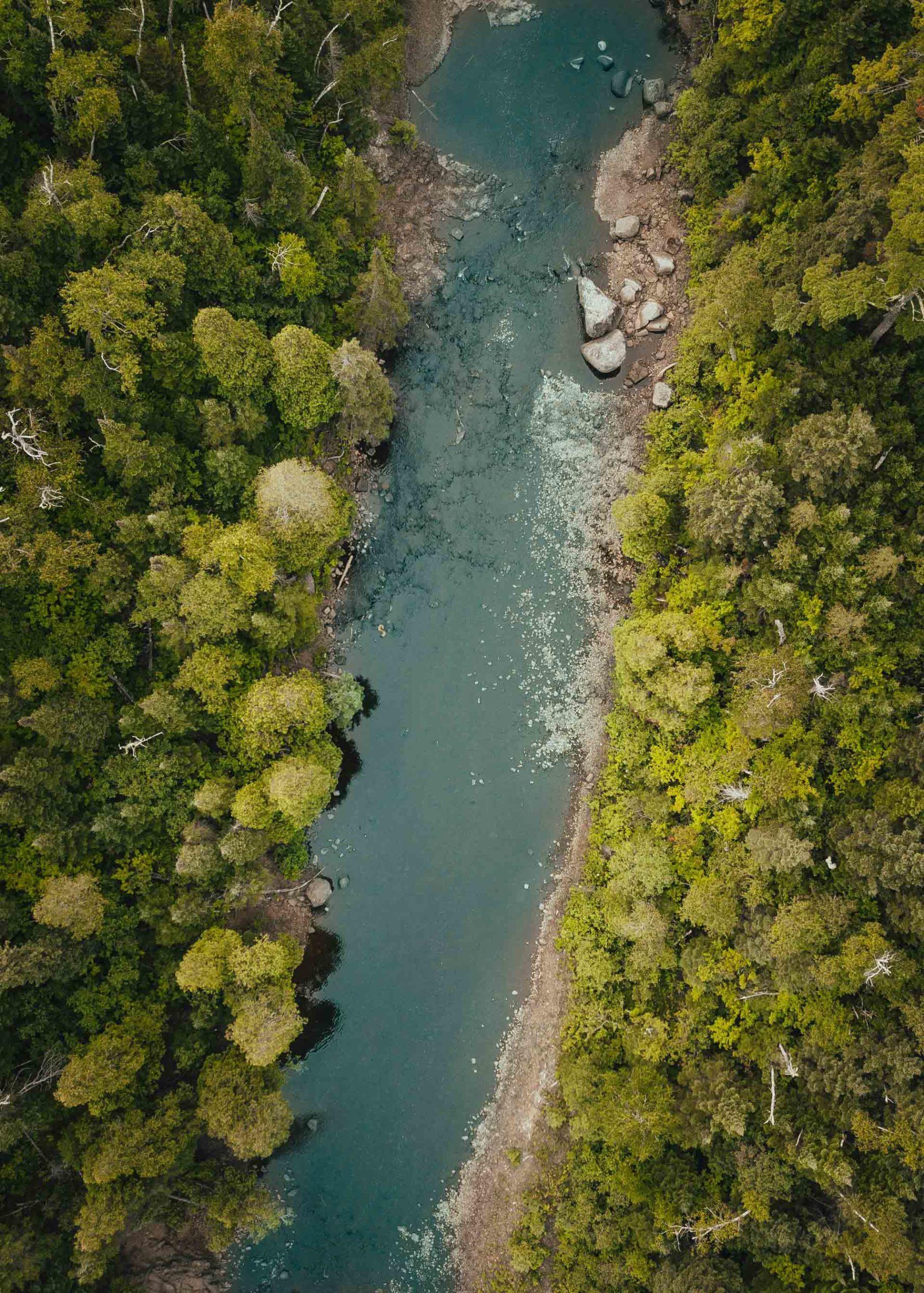 Cuidar de nuestro planeta implica consumir y producir de forma responsable