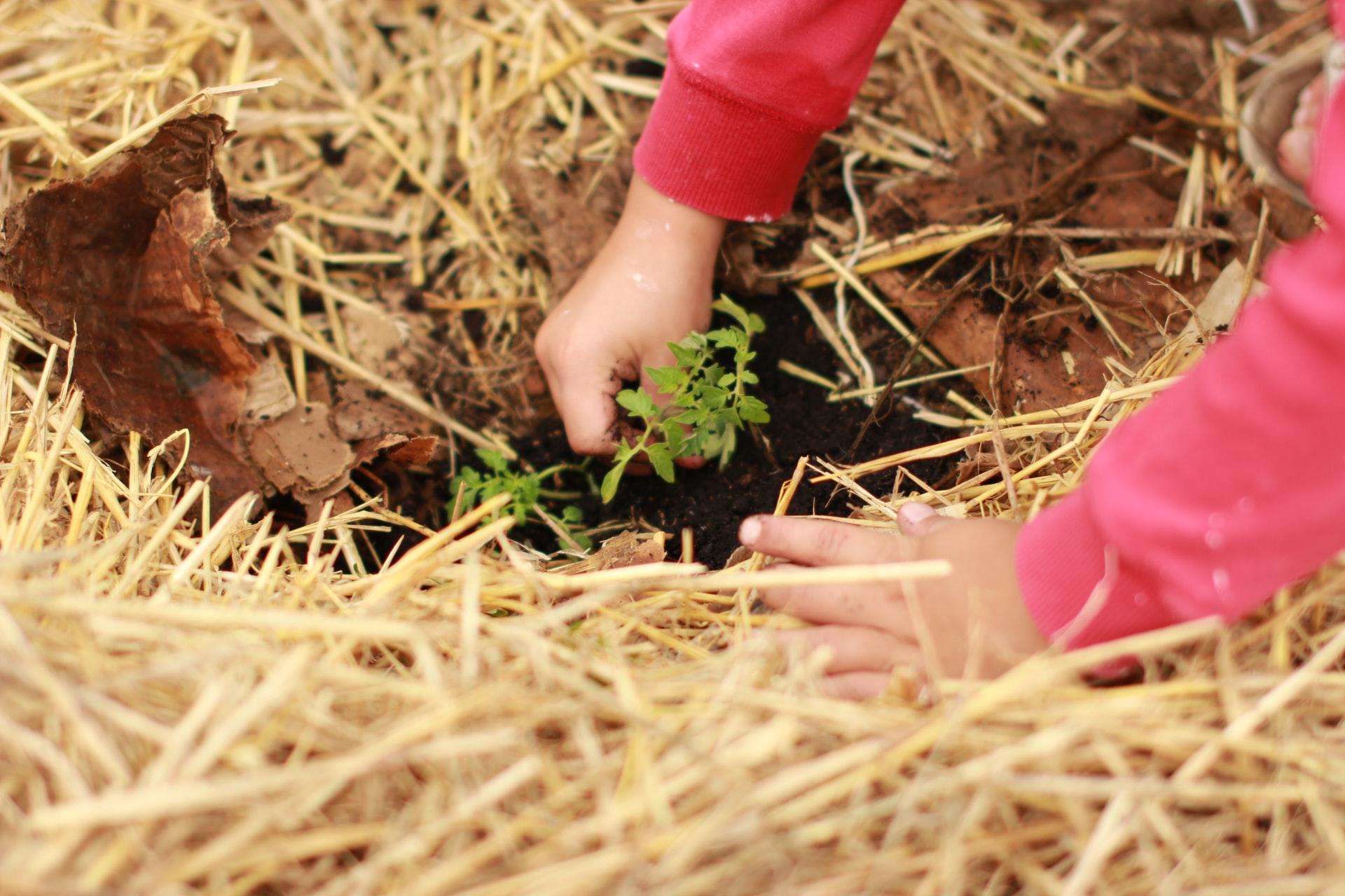 La sostenibilidad es una meta para lograr un mundo mejor.