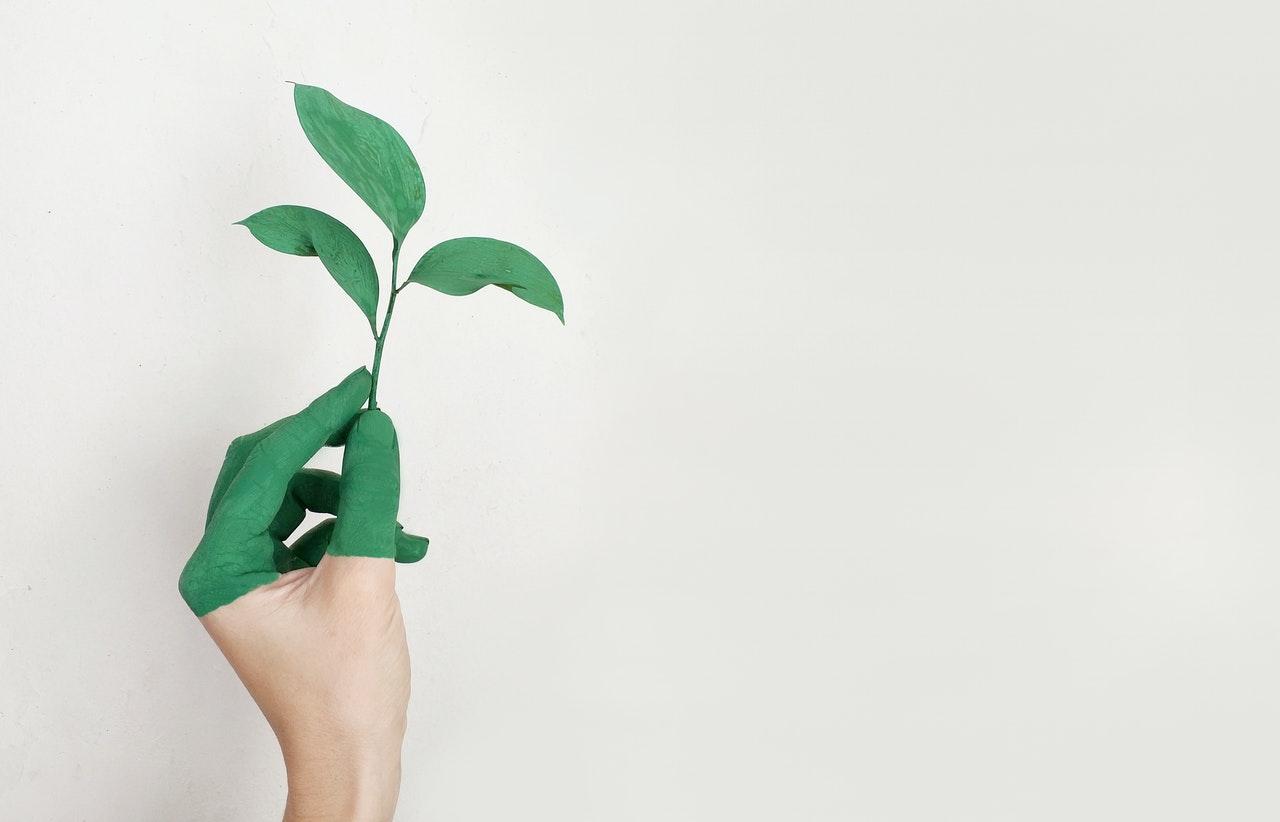 Los Objetivos de Desarrollo Sostenible son metas establecidas por los países pertenecientes a la UN en el año 2015