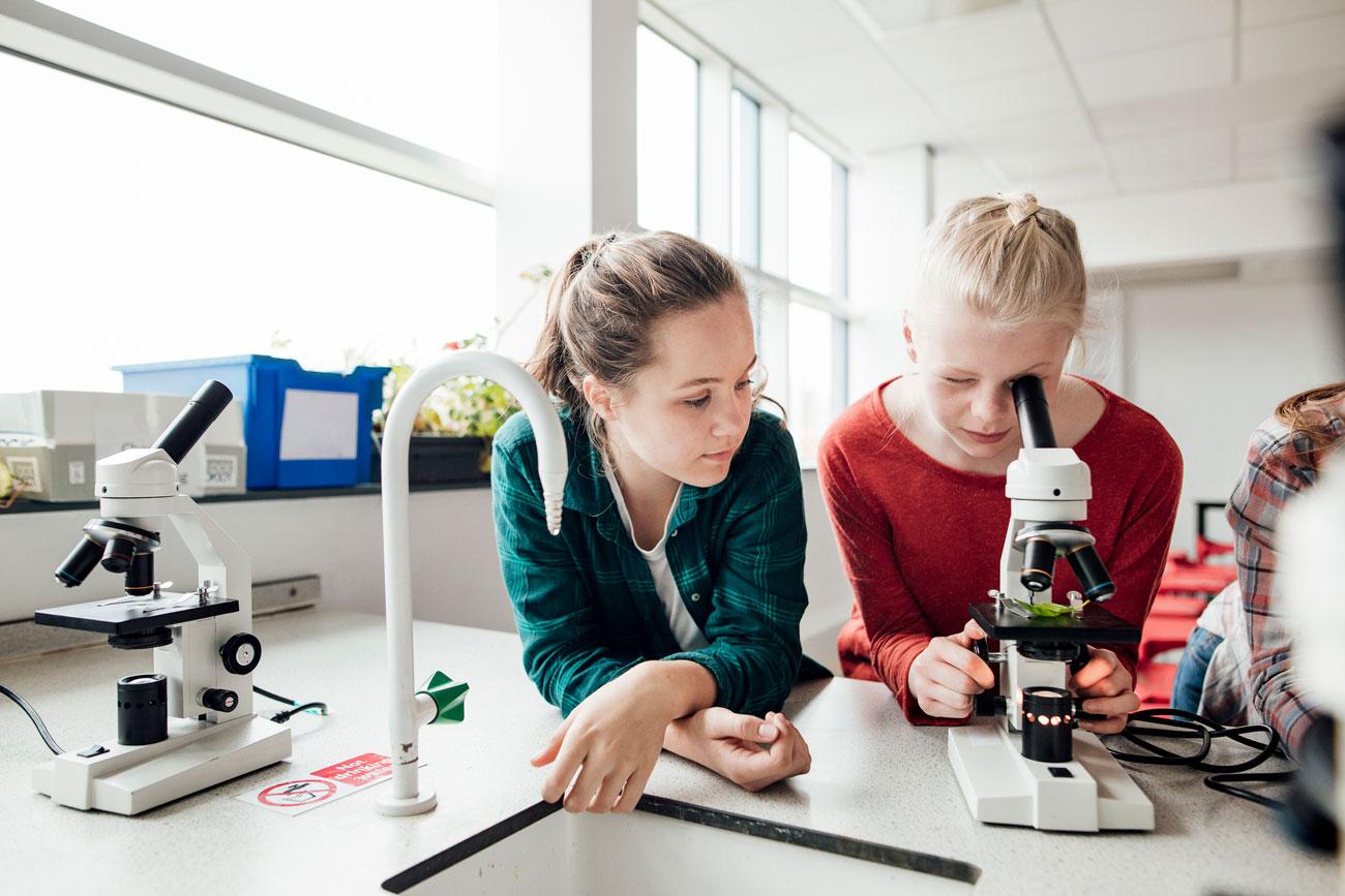 Proponer trabajos en grupo hará que, además de aprender sobre la asignatura, aprendan sobre cómo trabajan sus compañeros y disfruten más.