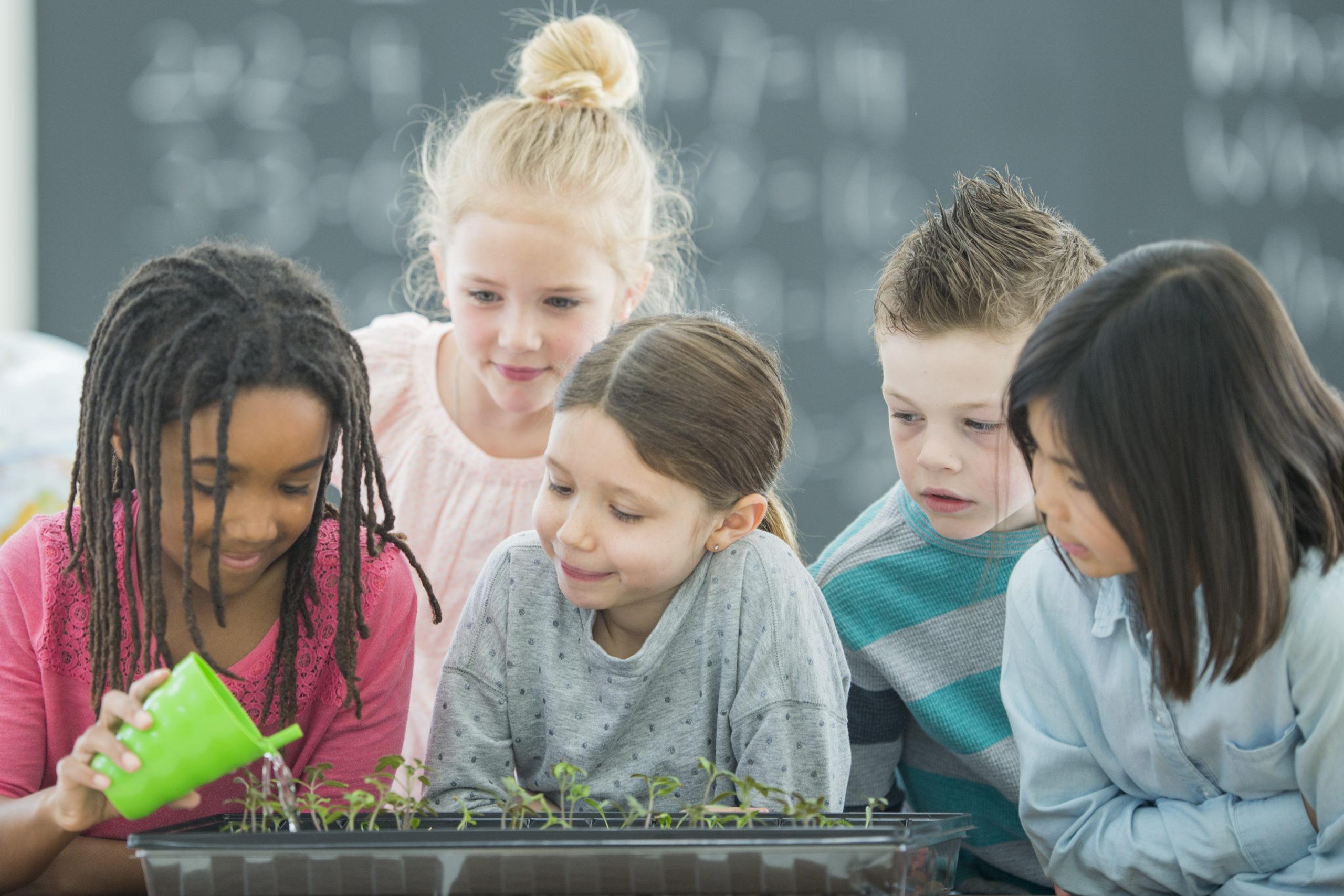 Crear espacios de trabajo en el colegio es otra forma de trabajar que hace que sea única y personal del colegio.